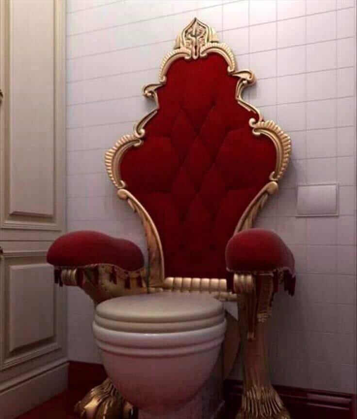 унитаз со спинкой кресла