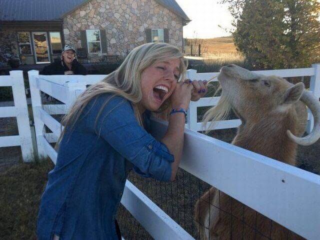 девушка блондинка рядом с козлом