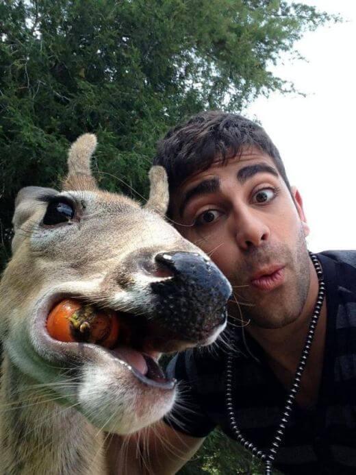 парень делает селфи с животным