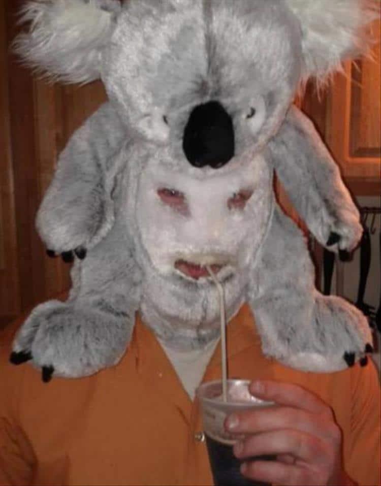 парень с коалой игрушкой на голове