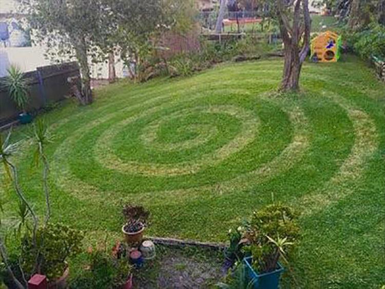 оригинально постриженный газон