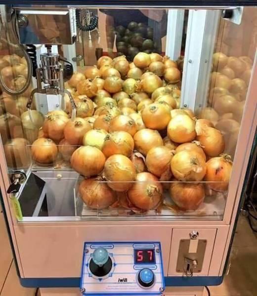 лук в автомате с игрушками