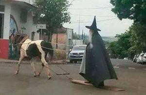 волшебник на лошади
