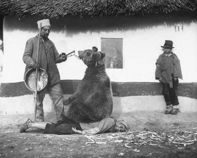медведь сидит на женщине