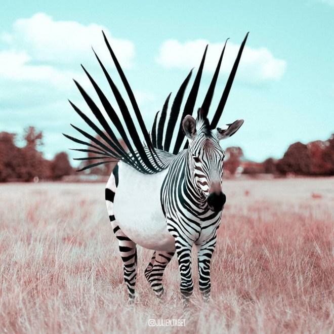 отфотошопленная зебра