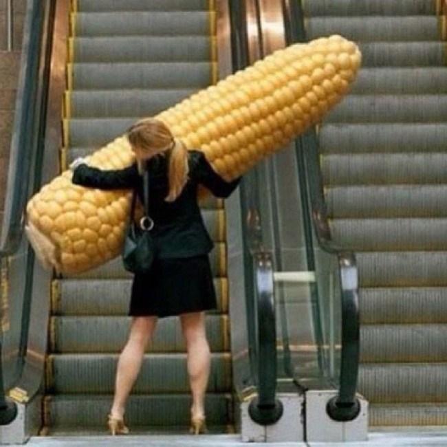 девушка с большой кукурузой в руках
