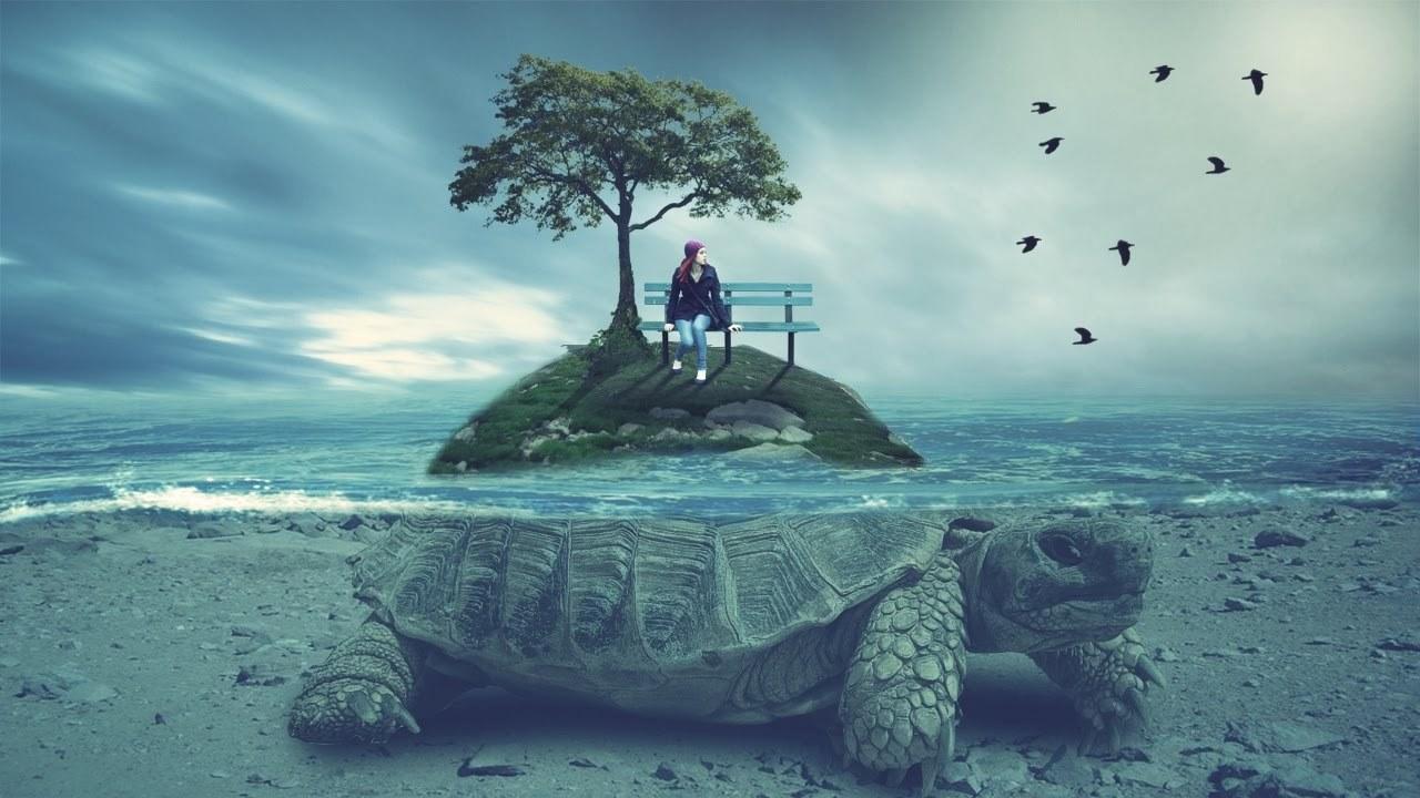 фотошоп и черепаха