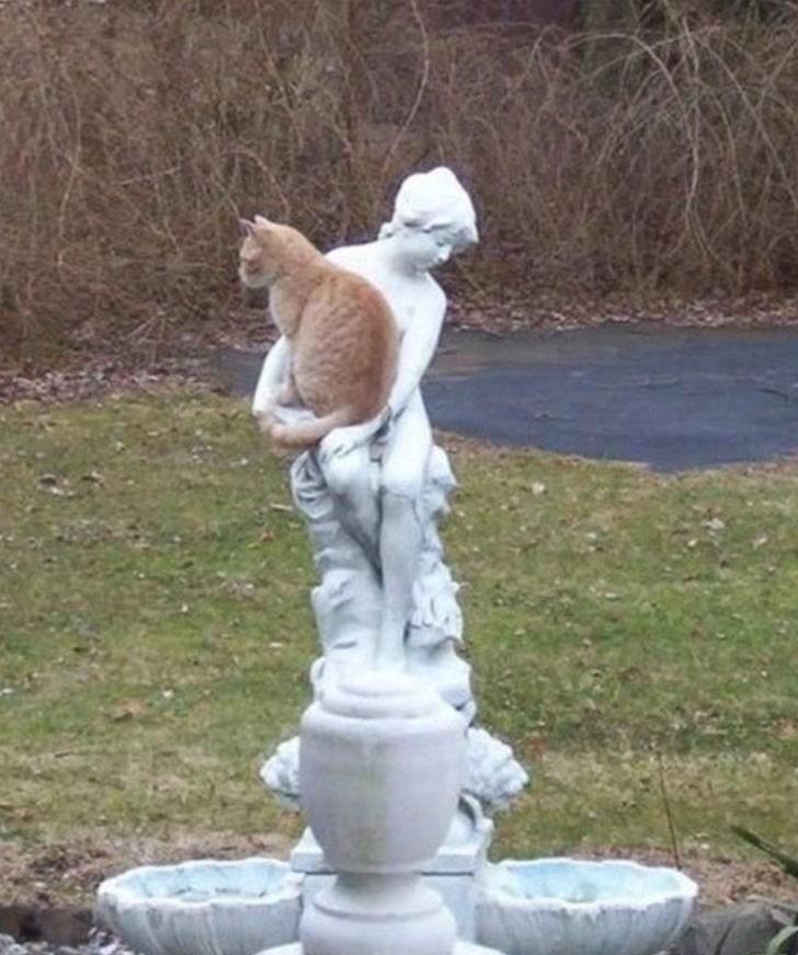 рыжий кот сидит на статуе