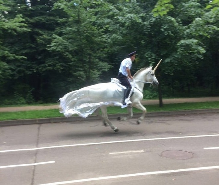 мужчина скачет на белом коне