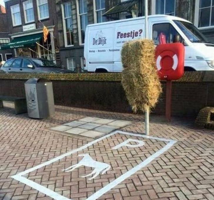 парковка для лошадей