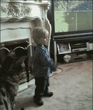 мальчик дразнит котов