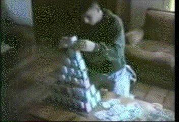 кот сносит карточный домик