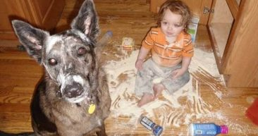 балованные дети