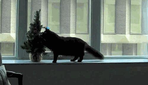 кот скидывает елку на пол