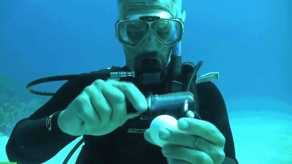 яйцо под водой