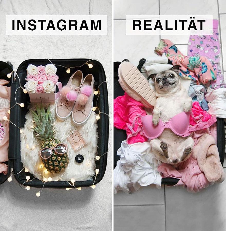 Инстаграм и жизнь: чемодан