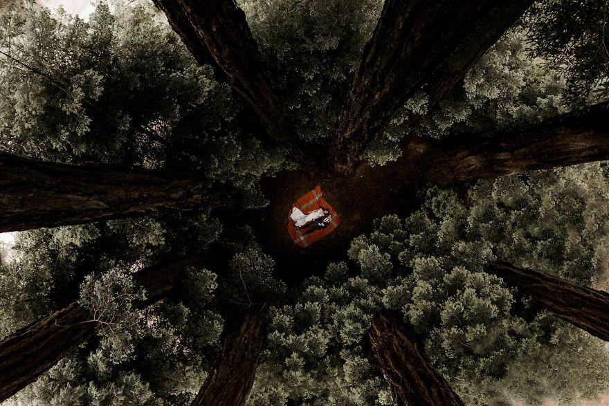 Калифорния, США фото