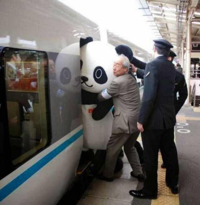 человек в костюме панды не влезает в поезд