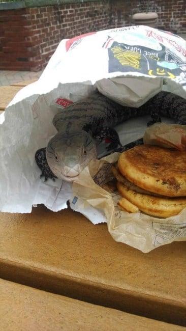 пакет с бургером
