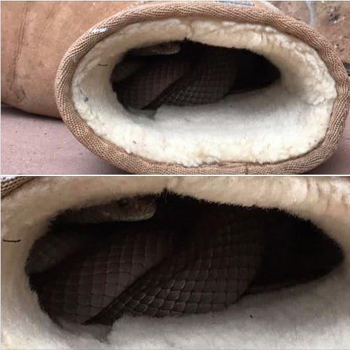 змея в сапоге