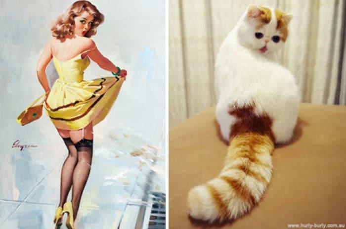 девушка пин-ап и рыже-белый кот