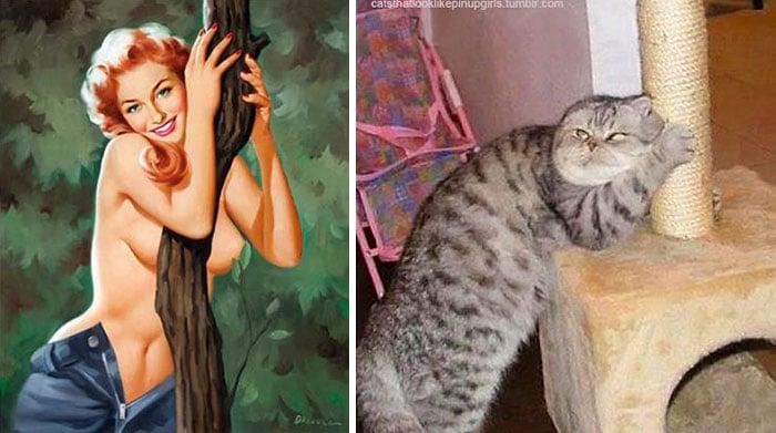 пин-ап девушка и полосатый кот