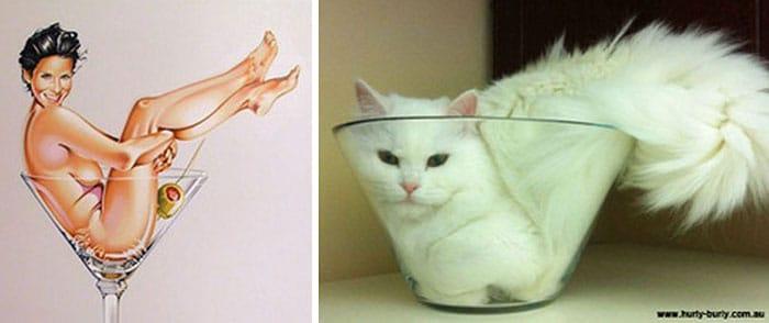 девушка в бокале и кошка в миске