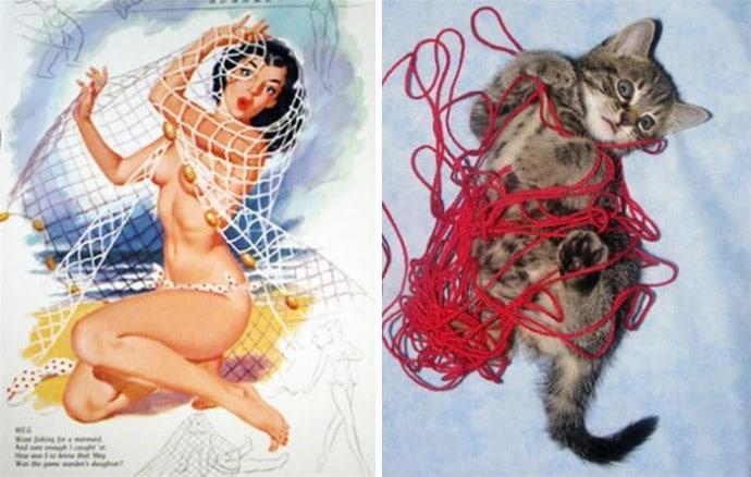 девушка пин-ап в сетке и кошка в нитках