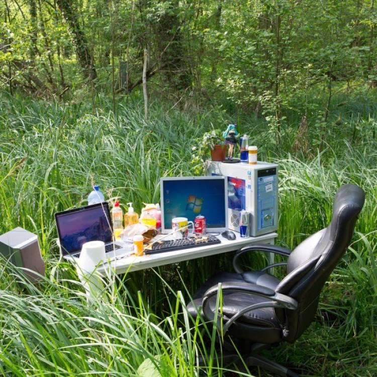 рабочий стол на природе