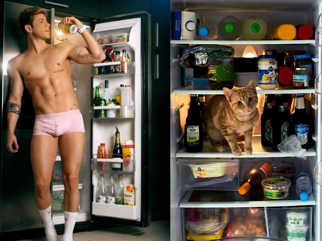 парень у холодильника и кот в холодильнике