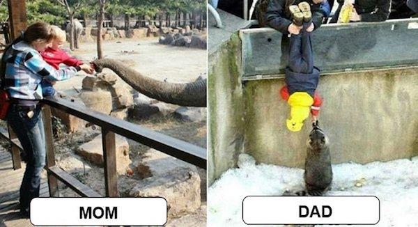 дети с родителями в зоопарке