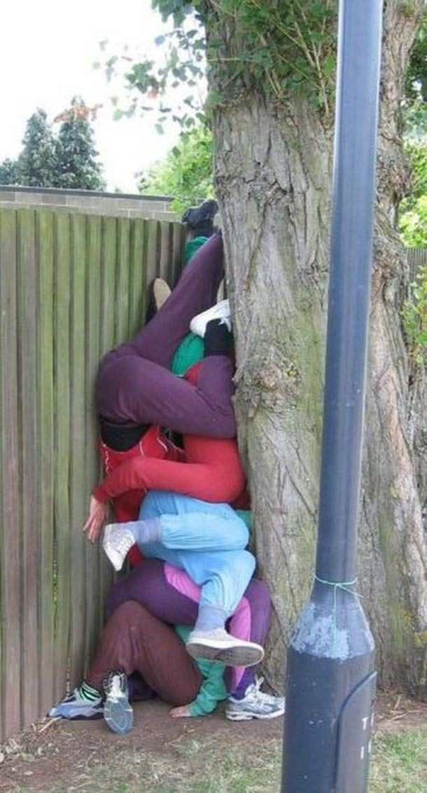 люди за деревом