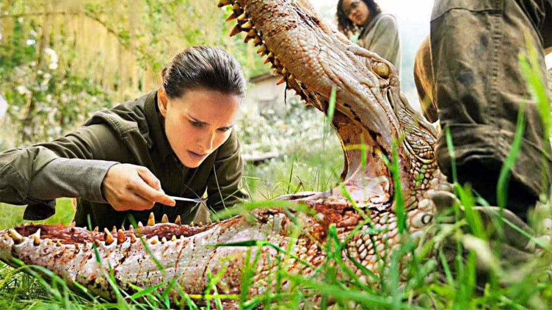 женщина проверяет зубы в пасти крокодила