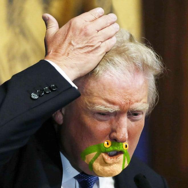 дональд трамп поправляет волосы