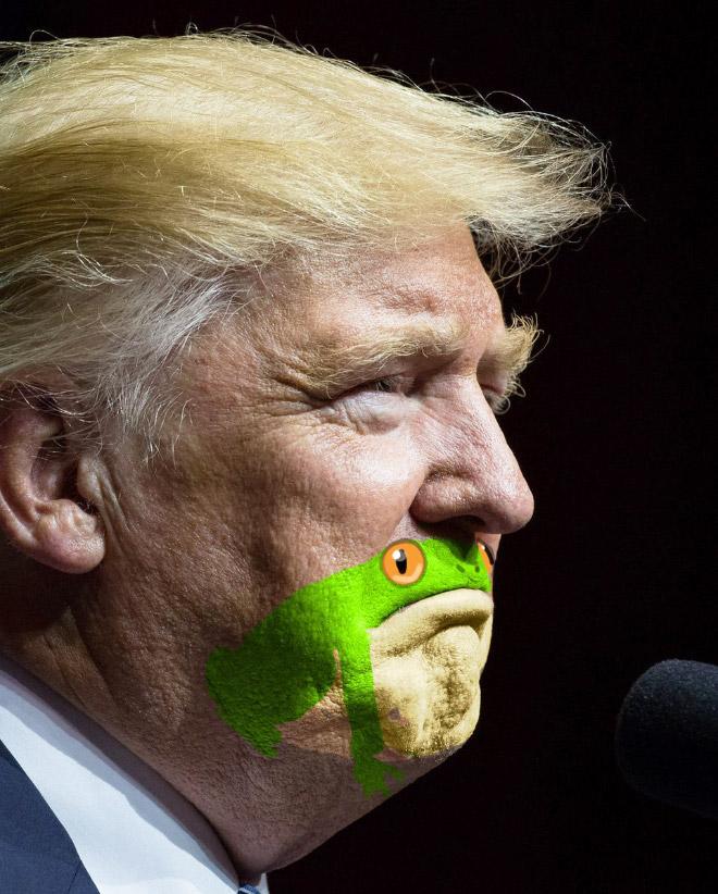 дональд трамп в профиль