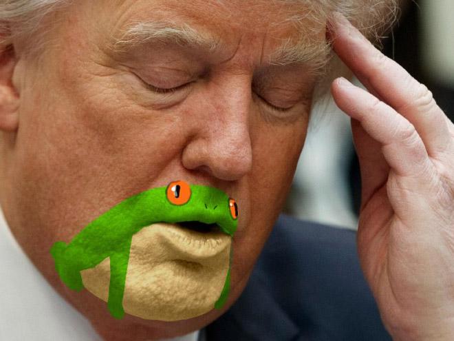 дональд трамп с закрытыми глазами