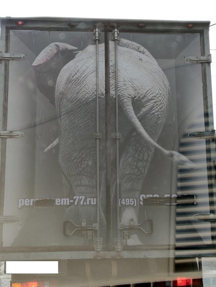 слон нарисованный на грузовике