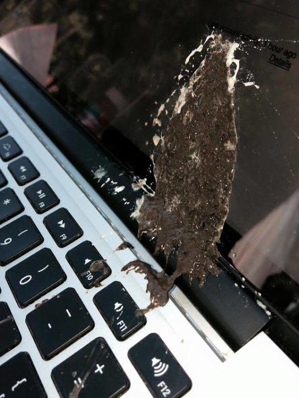 ноутбук в птичьем помете