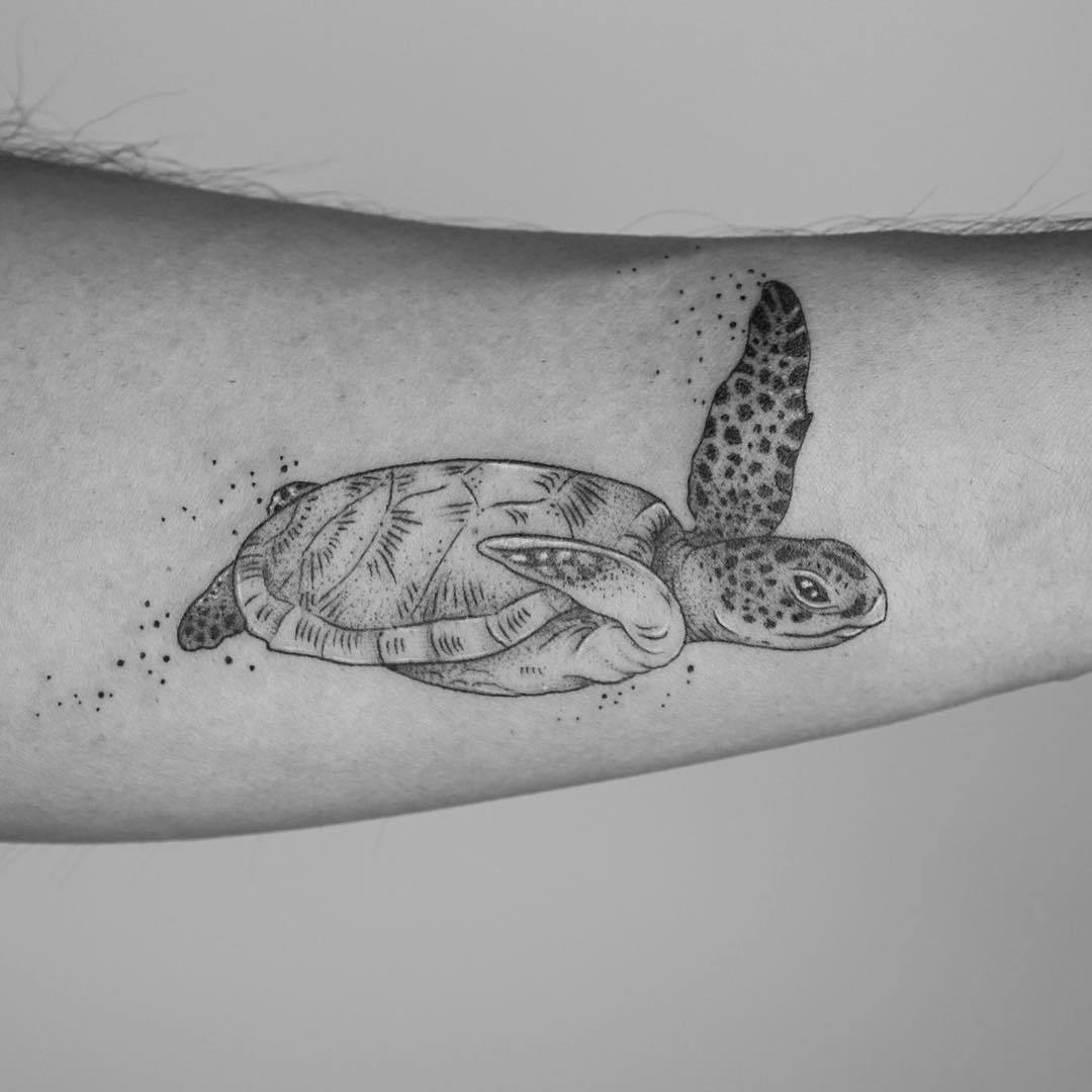 татуировка в виде черепахи