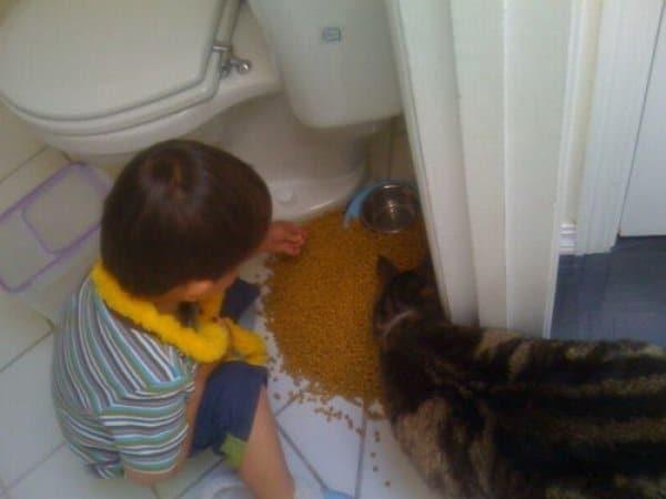 мальчик с котом в туалете