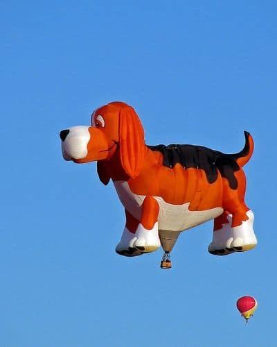 воздушный шар в виде пса