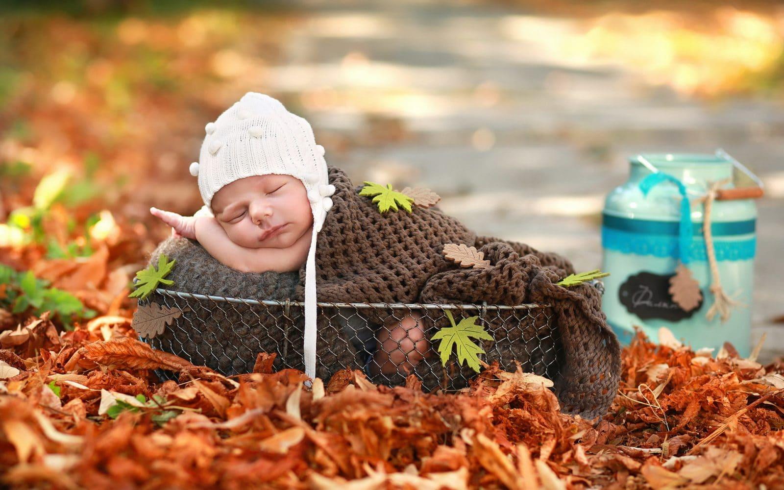 листья осень ребенок лежит в корзинке