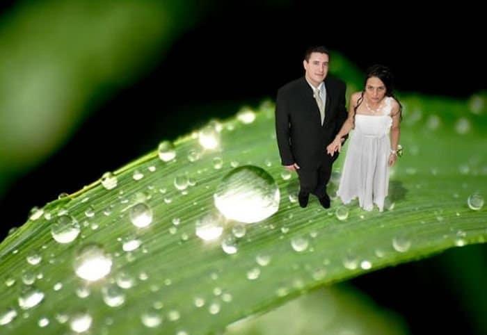 жених и невеста на листочке