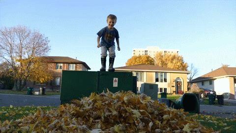 мальчик прыгает в листья