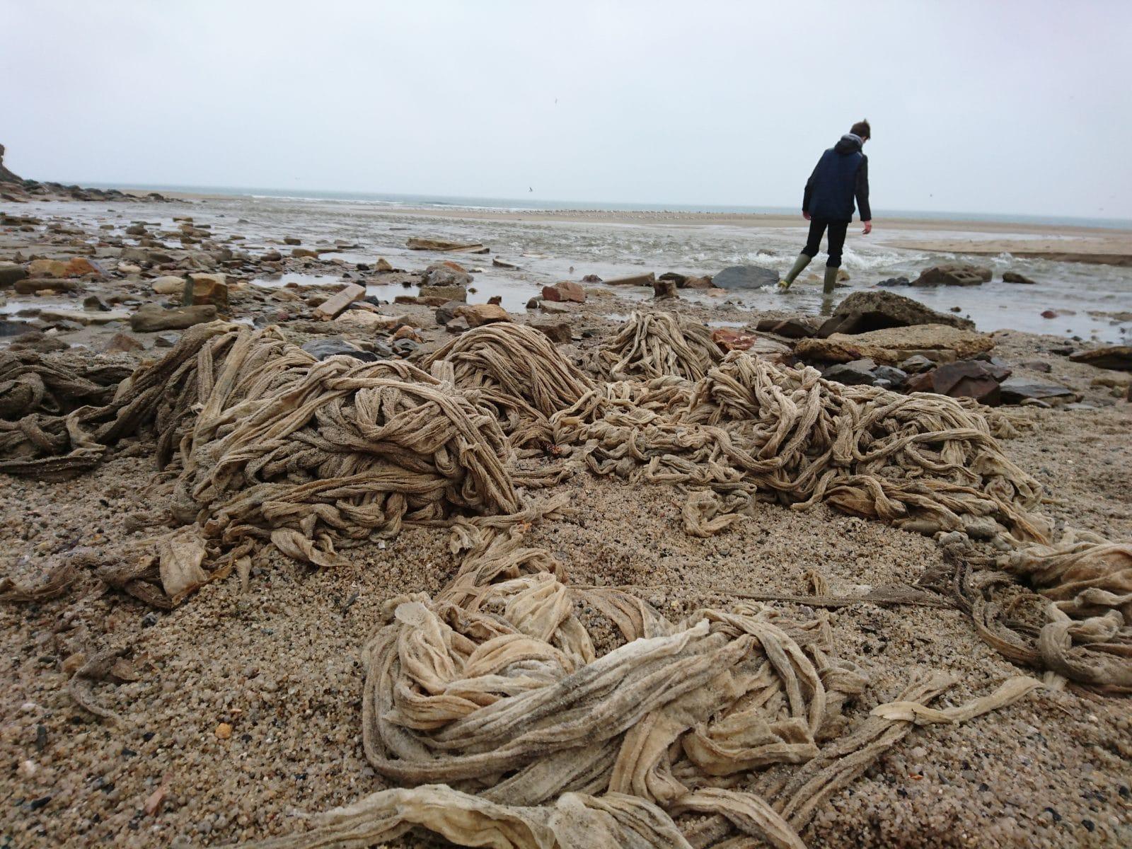 мусор возле моря