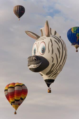воздушный шар в виде зебры