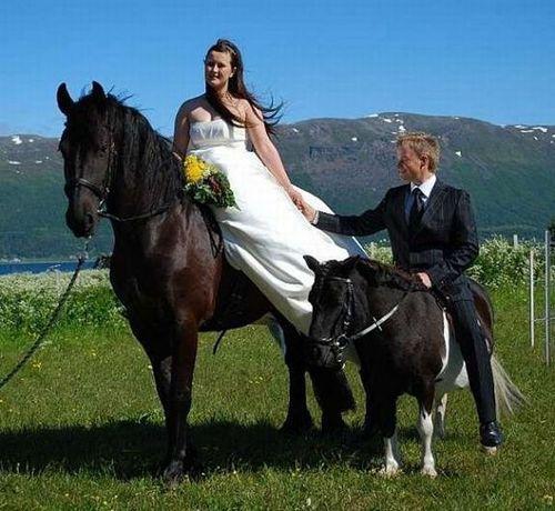 жених и невеста на конях