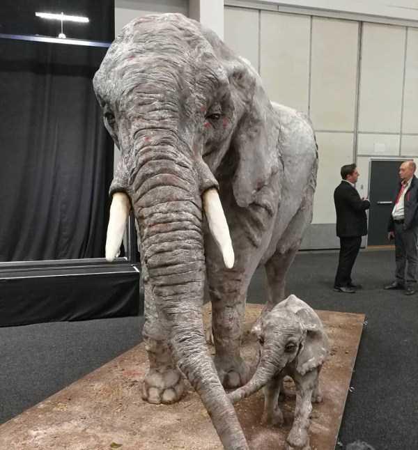 торт в форме слонов