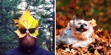 листья осень люди