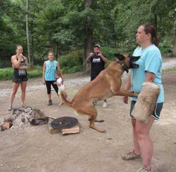 собака кусает мужчину за грудь